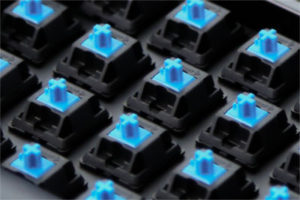 cherry_MX_blue_switches